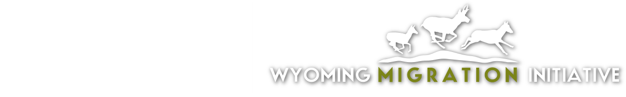 University of Wyoming and Wyoming Migration Initiative logo