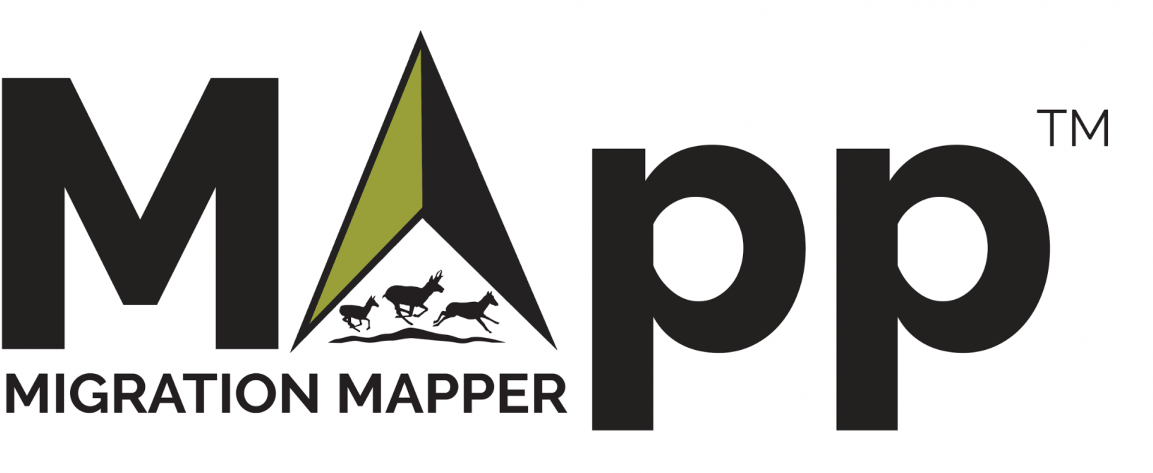 MigrationMapper logo